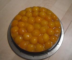 Kuchenmanie_Aprikosenkuchen